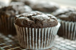 Persimmon Chocolate Muffins