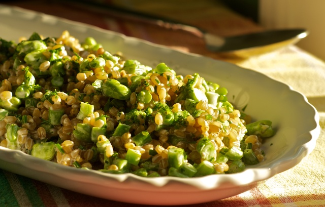 White Wheat Berry Salad with Fava Beans, Green Beans